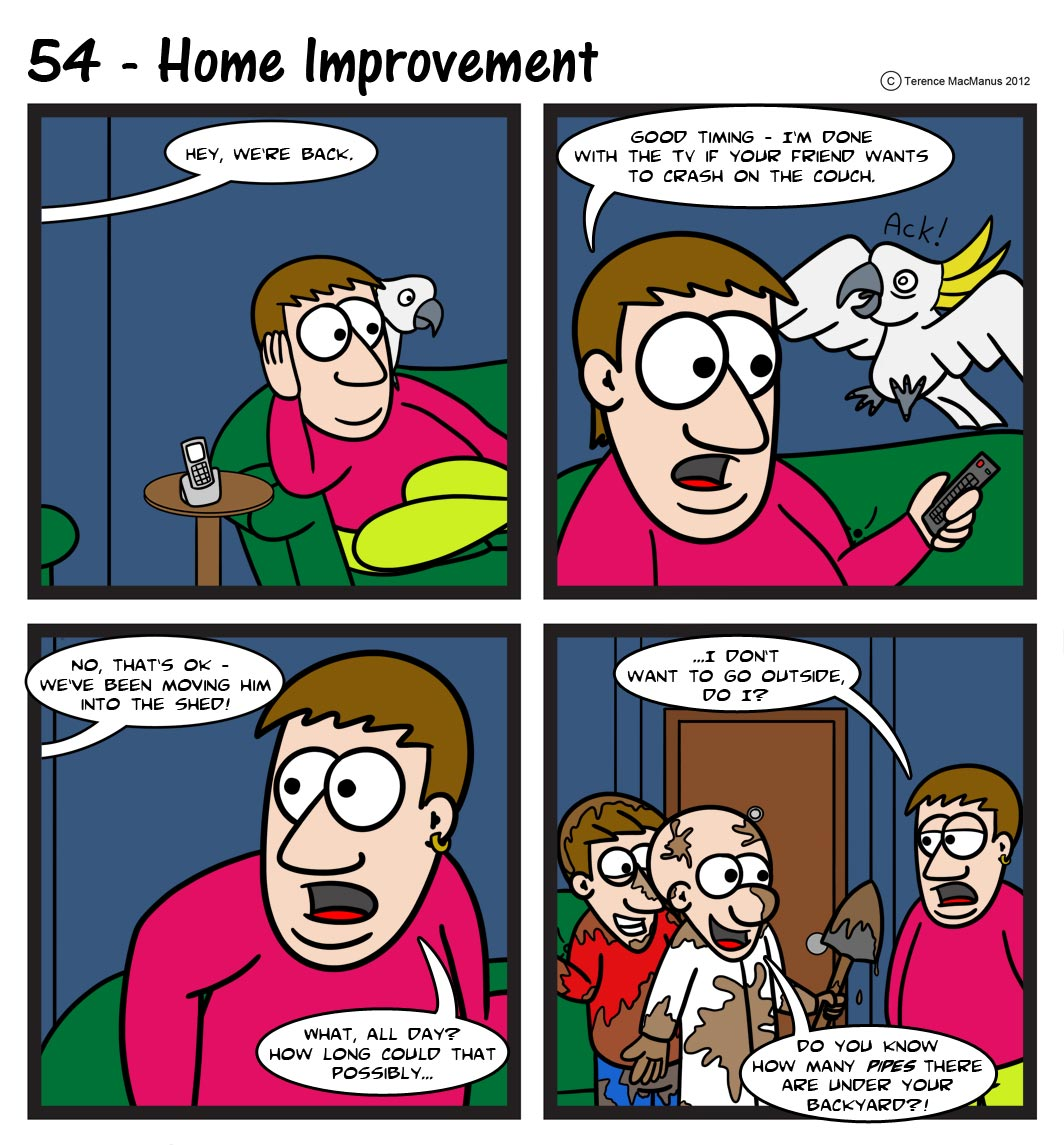 54 – Home Improvement